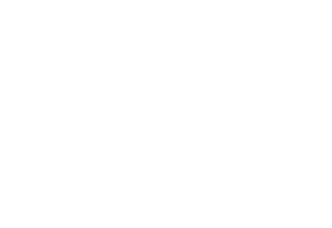 The Coding Monkeys